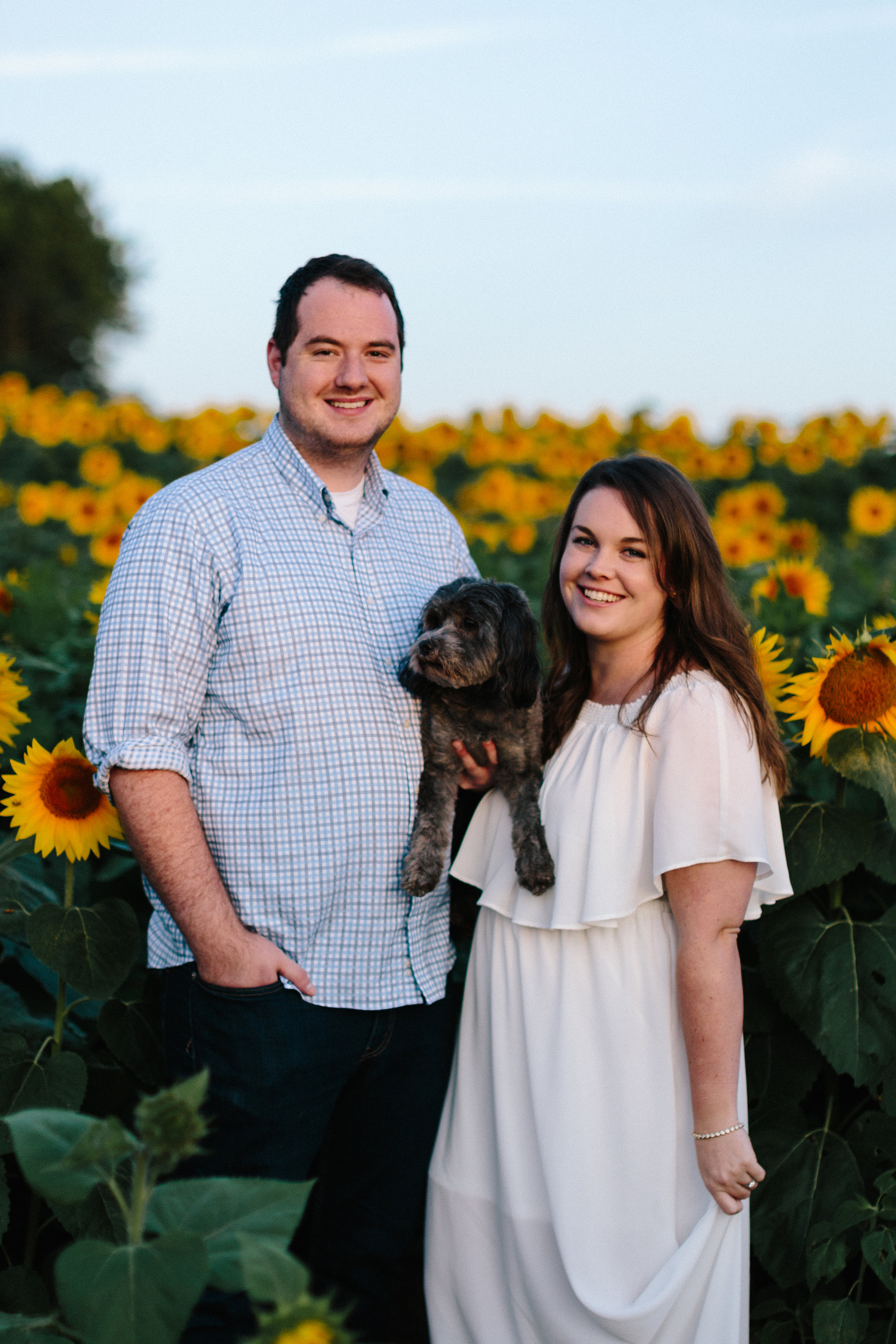 alyssa barletter photography sunflower field photos-8.jpg