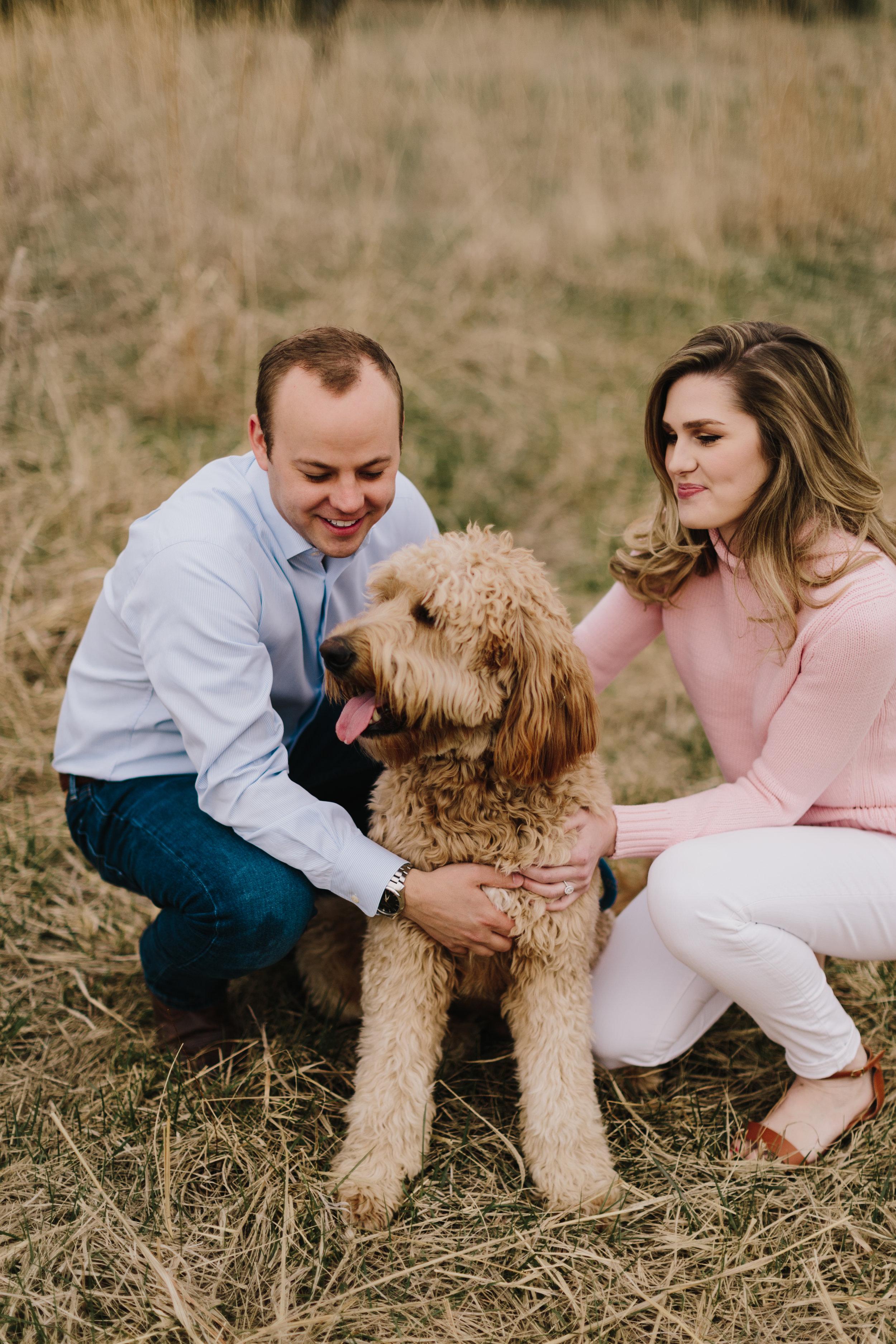 alyssa barletter photography shawnee mission park golden labradoodle dog-6.jpg