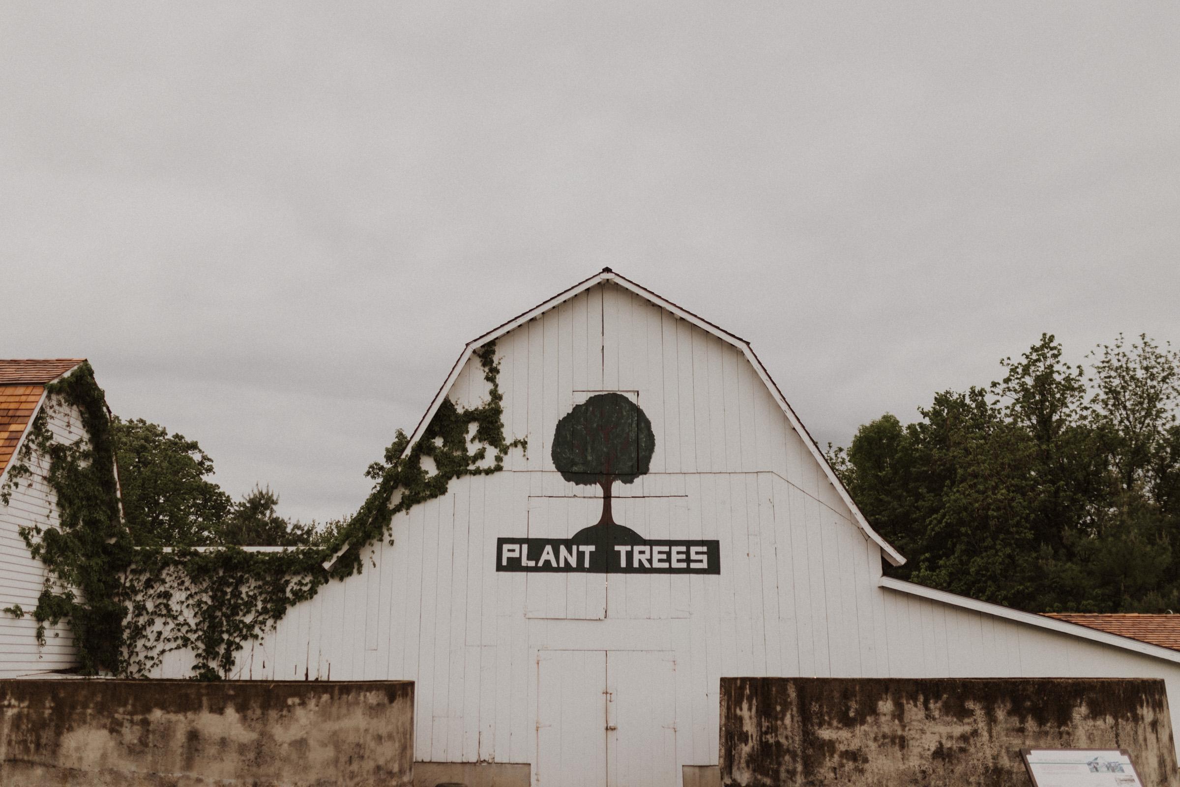 alyssa barletter photography nelson wedding nebraska city lied lodge morton barn spring wedding photographer-31.jpg
