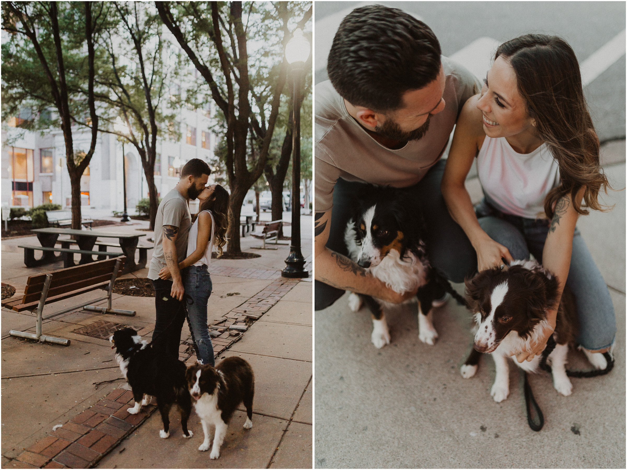 alyssa barletter photography downtown kansas city photos with couple and aussies austrailian shepards-11.jpg