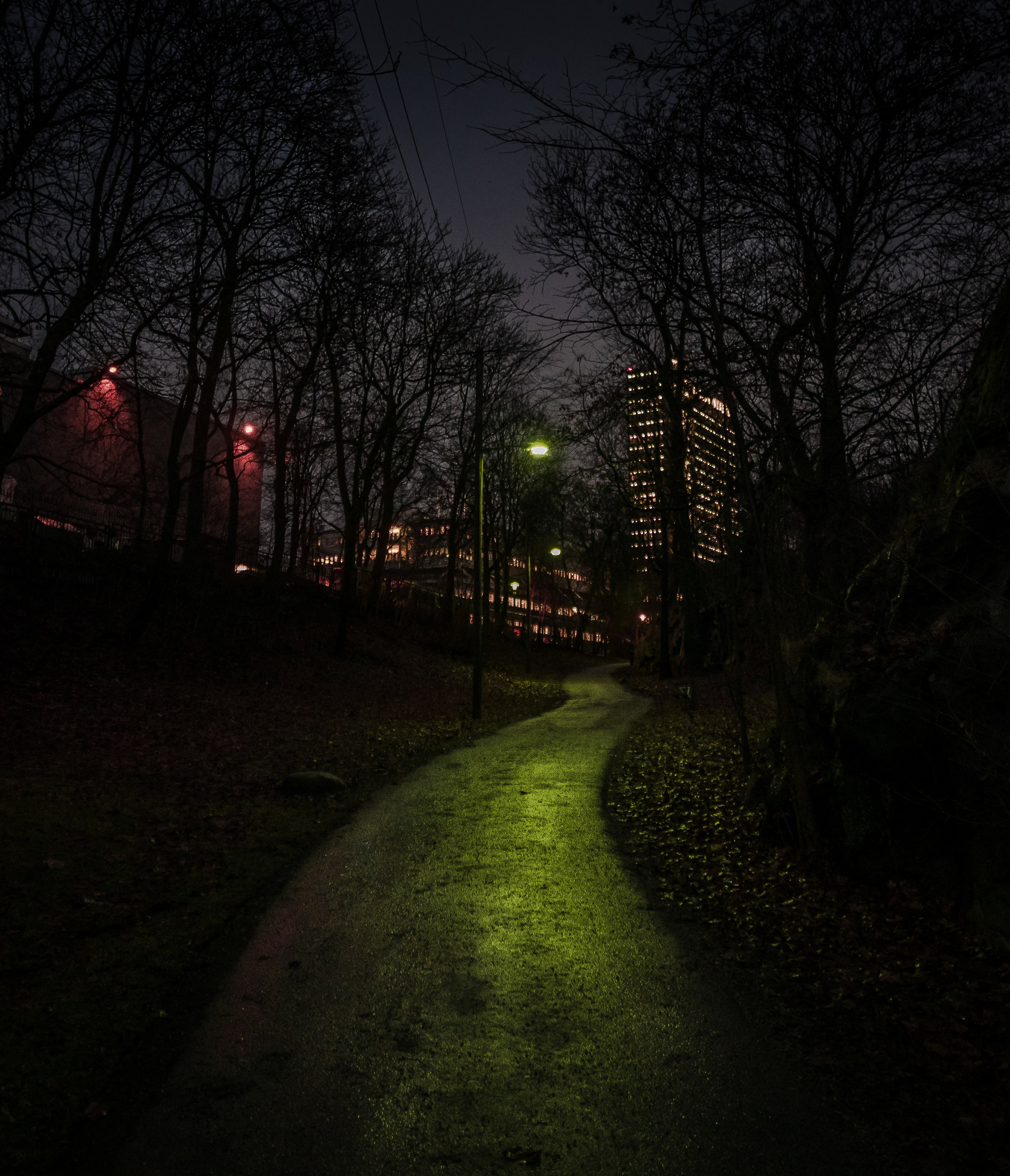 Mariebergsparken 20 december 2016. Foto: Nils Öhman
