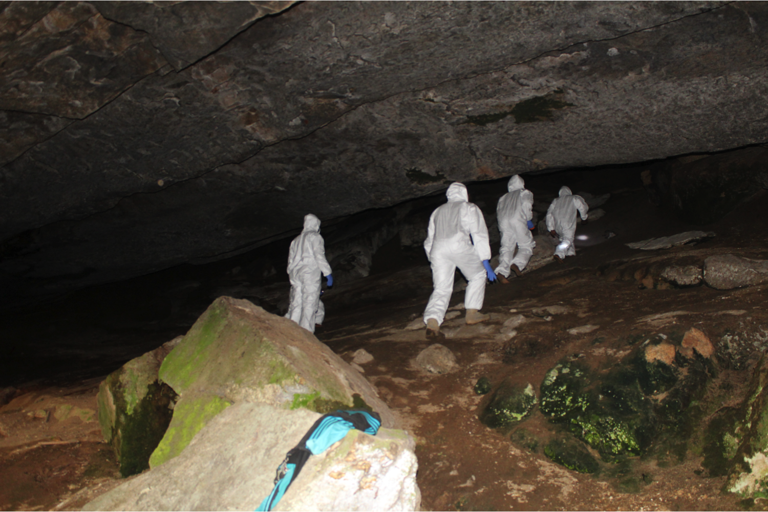 The team makes their way up the cave to take a peak inside