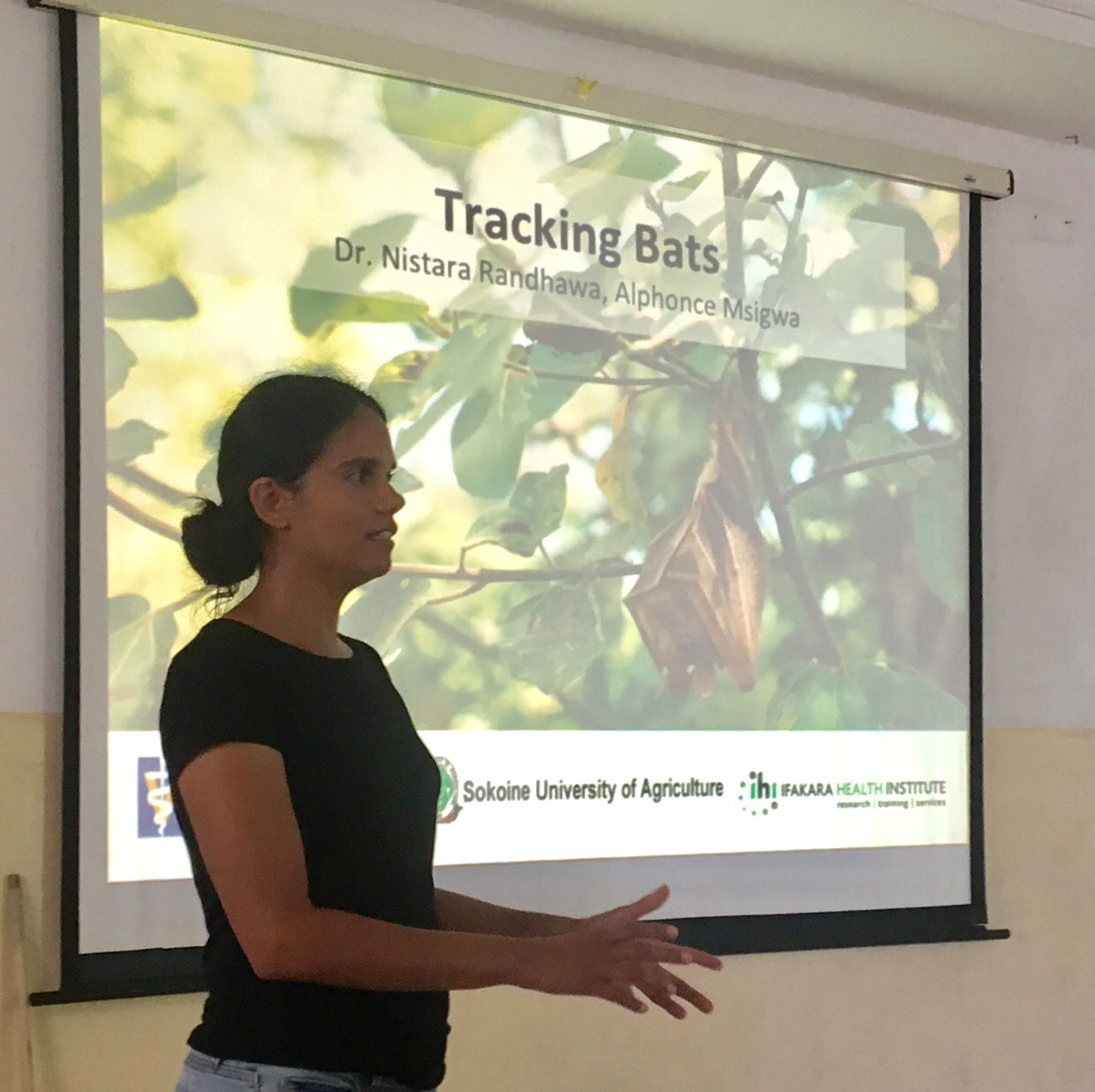 Nistara, a PhD student from UC Davis presenting data from some really fascinating bat tracking studies.