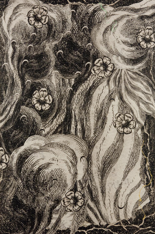 Brazen Man; Folio V; Recto