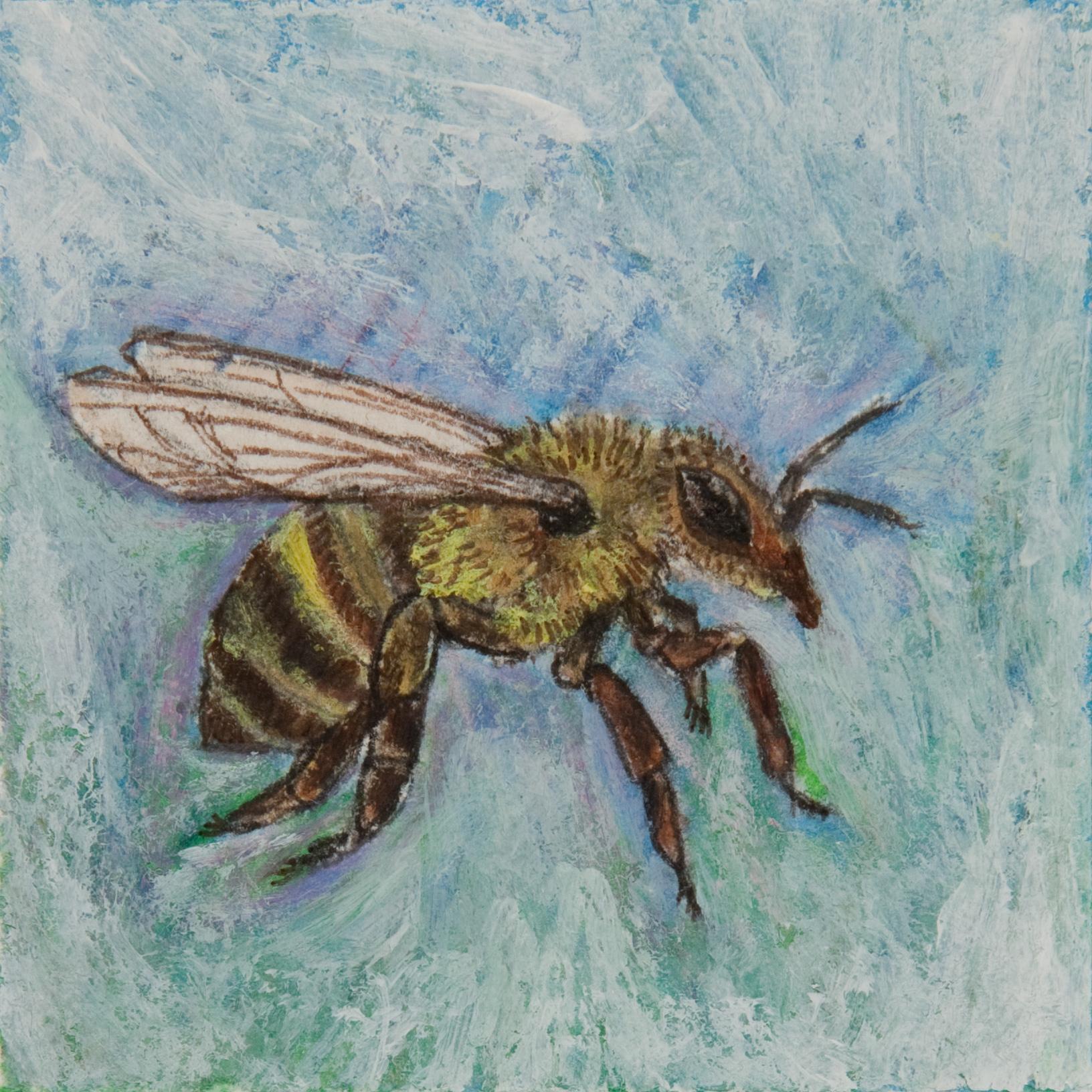 Bee Study I