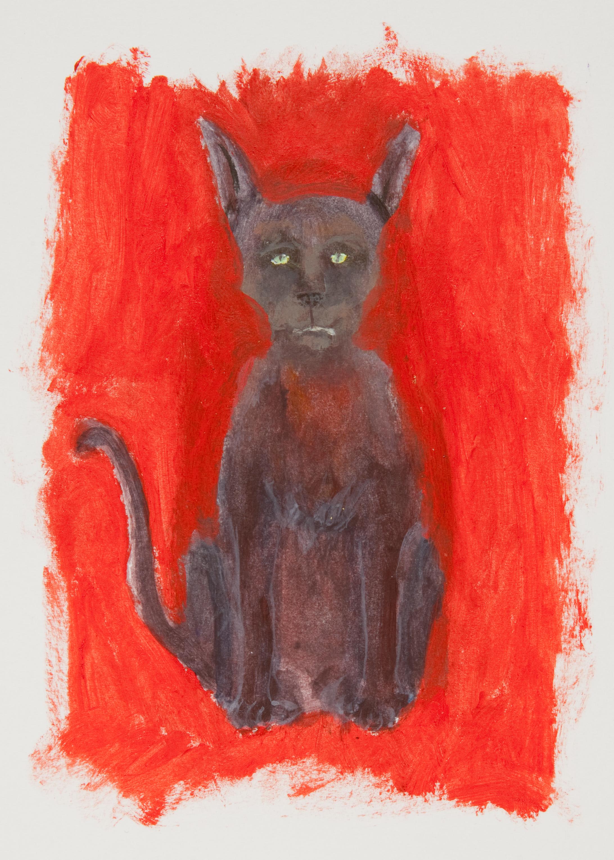 Jankey Cat