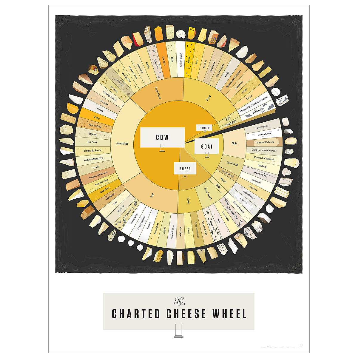 Charted Cheese Wheel