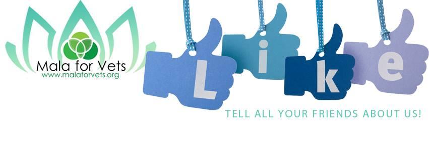 MalaforVets Facebook Likes.jpg