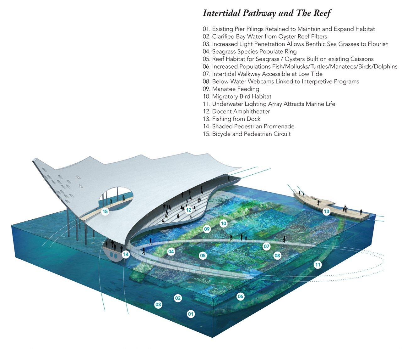 UnderwaterGarden-vignette.jpg