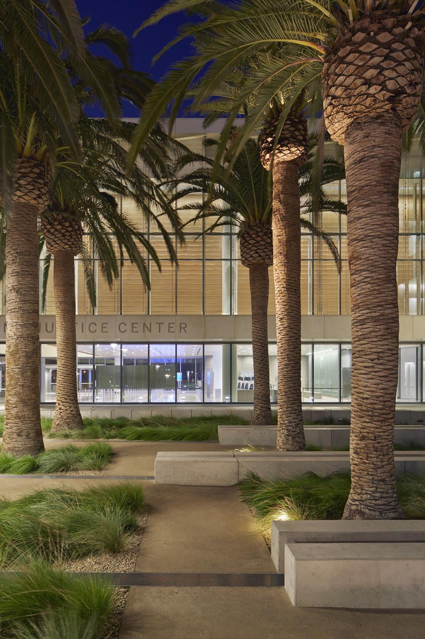 Palm Court at Night.jpg