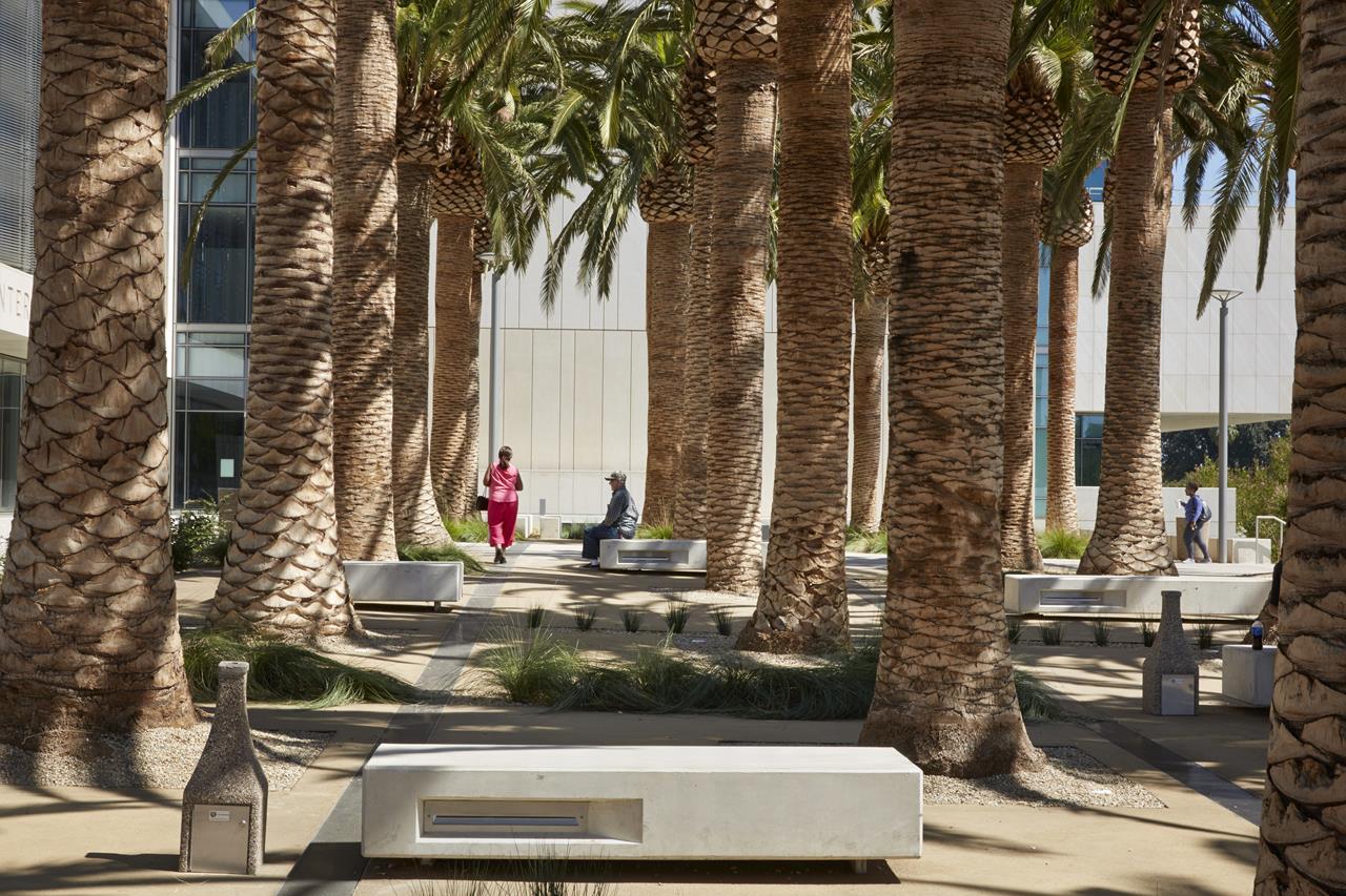 Upper Palm Court.jpg