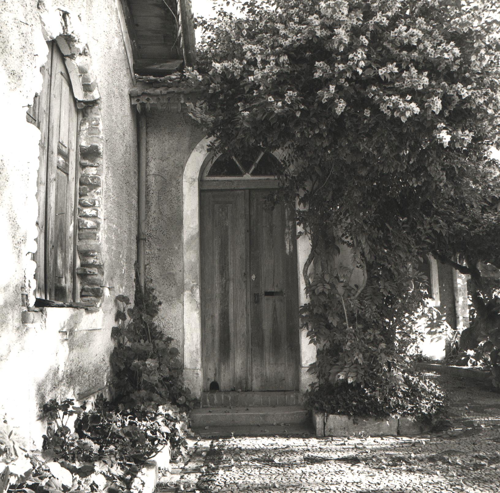 Abrantes Door, Portugal