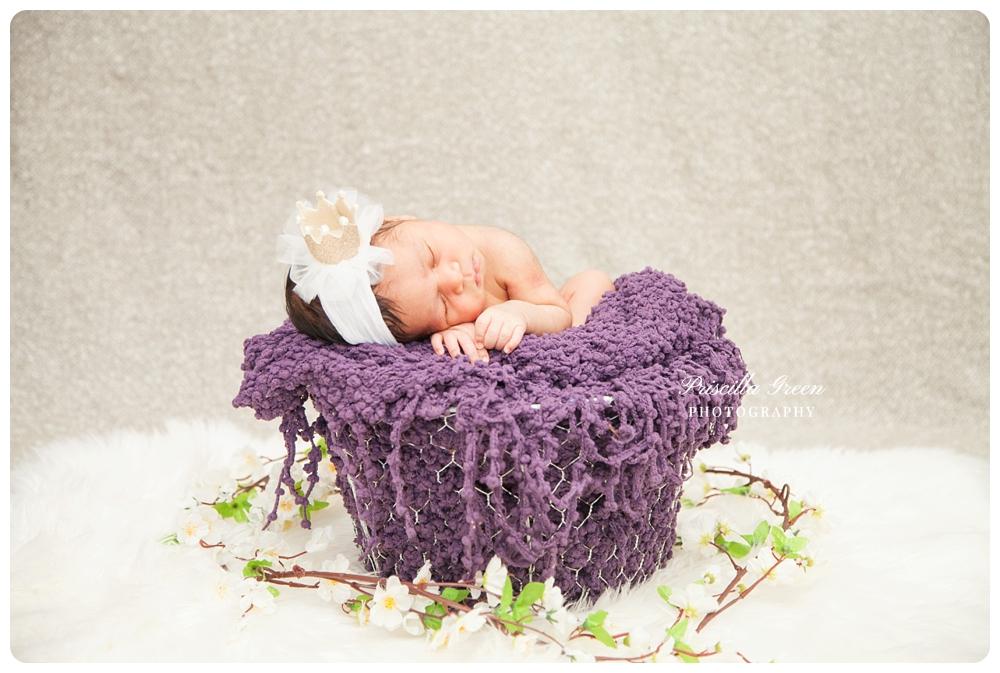 charlottephotographer_newborn_Priscillagreenphotography_0016.jpg