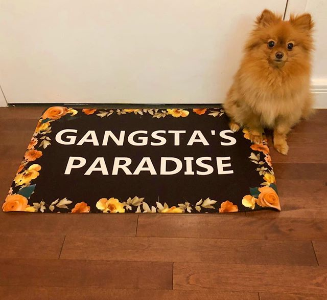 I'm the kinda G the little homies wanna be like 🎼😎🙌 @coolio #gangstasparadise #gangsta @amazon
