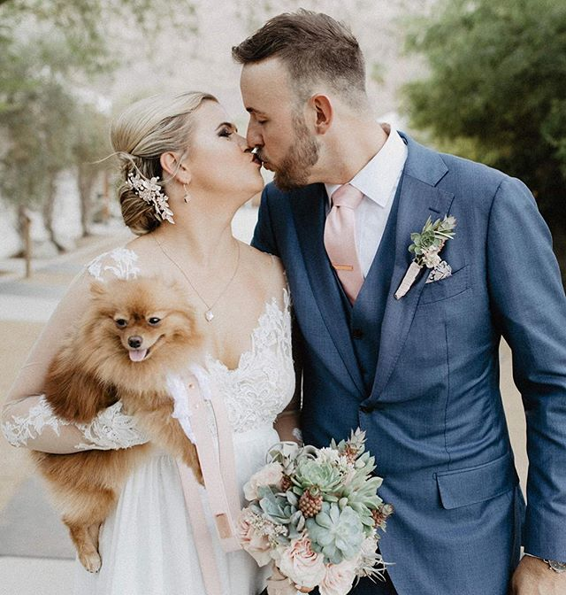 Two months ago today, I walked my human down the aisle to meet my other human. Everyone clapped and cheered for me, it was amazing. It's too bad I stole their thunder on their big day, but they still love me ❤️👰🏼🤵🏼🦊❤️ #imthestar #everyonelovesme #bestdayever
