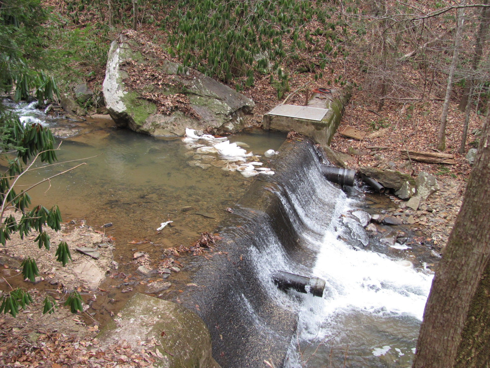 Pearson Falls Sediment Removal Evaluation Project, Saluda, NC