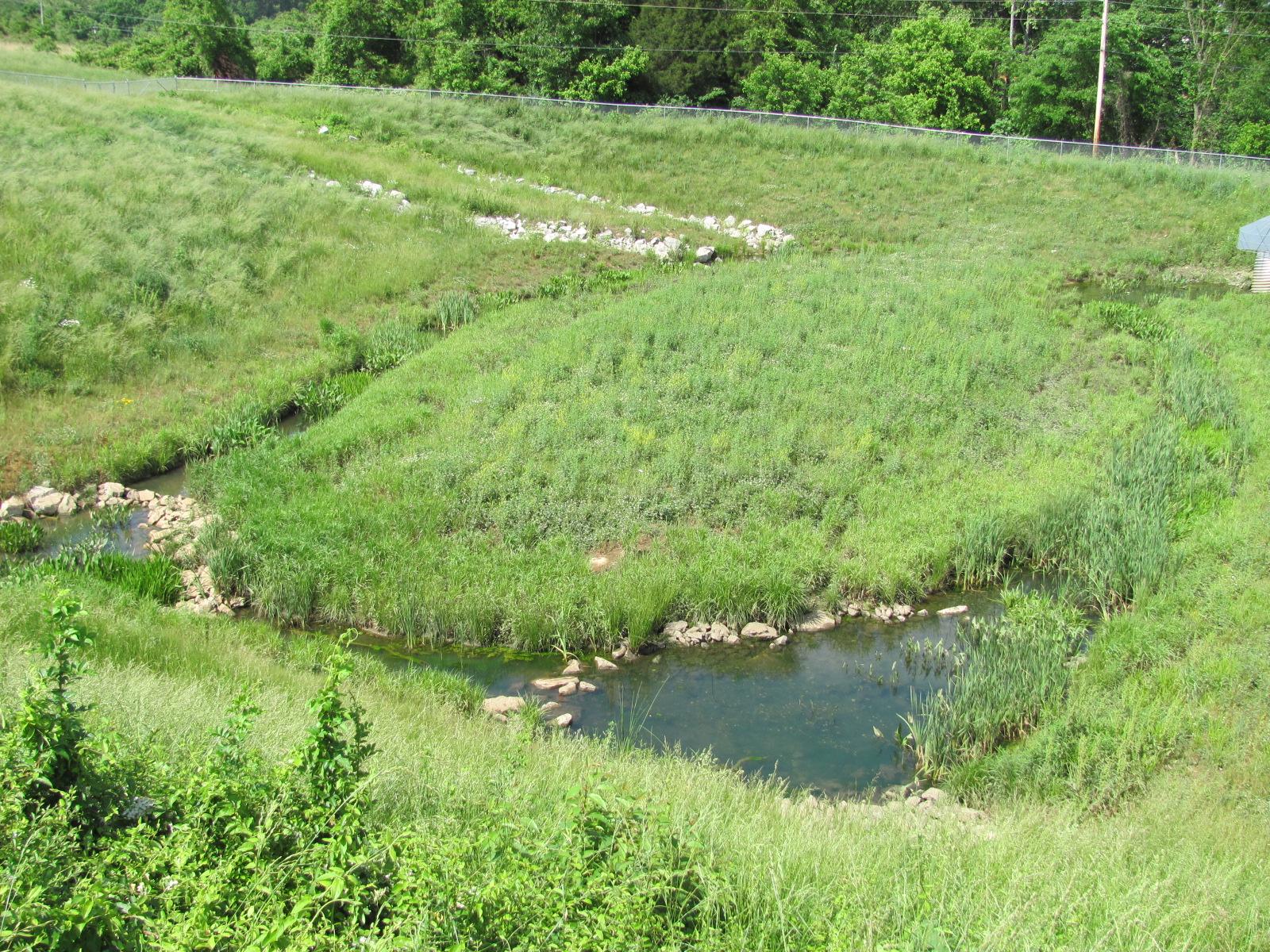 Stormwater Wetland Retrofit, College Creek Watershed, Greeneville, TN