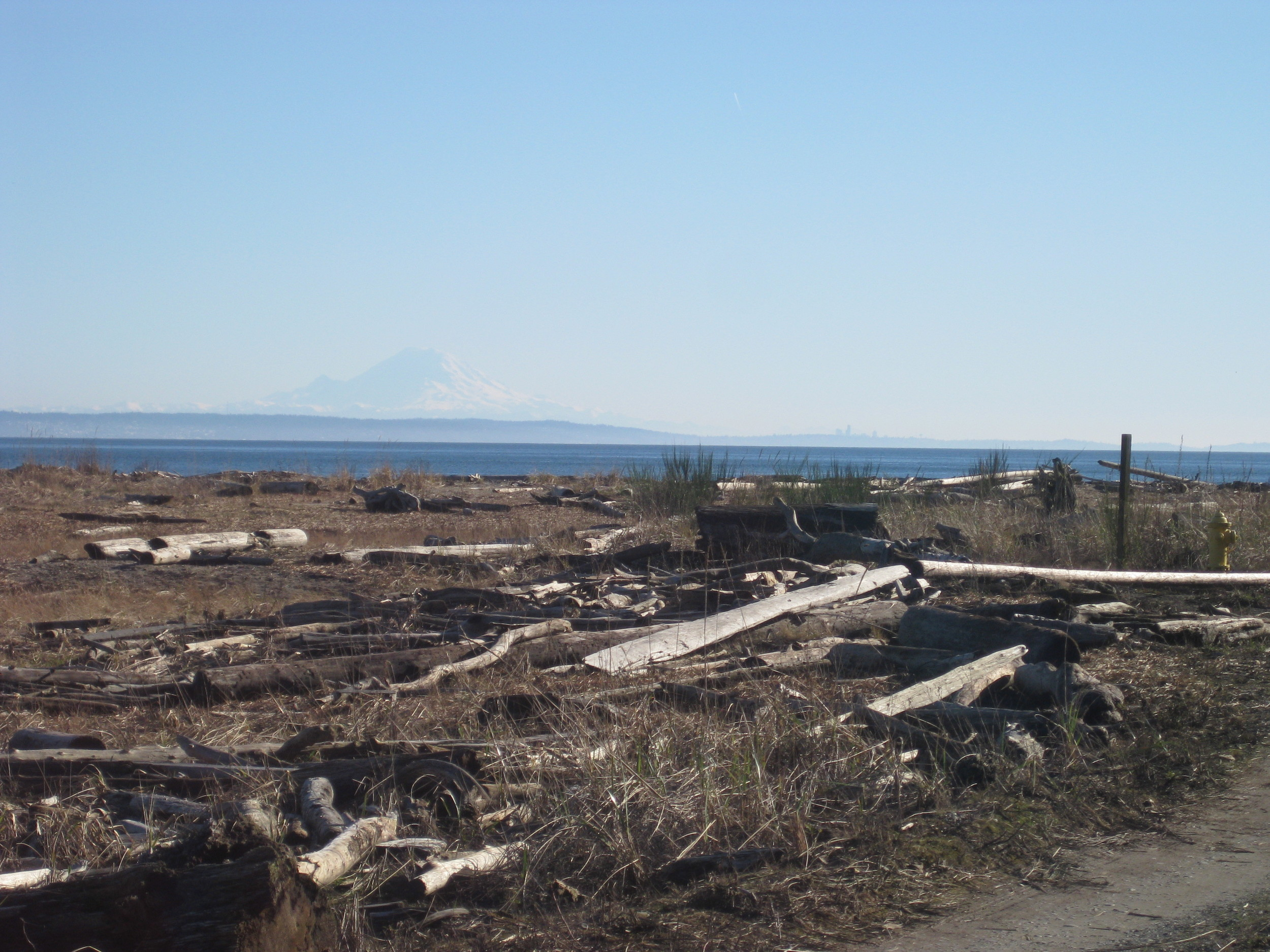 View of Mount Rainier to the South