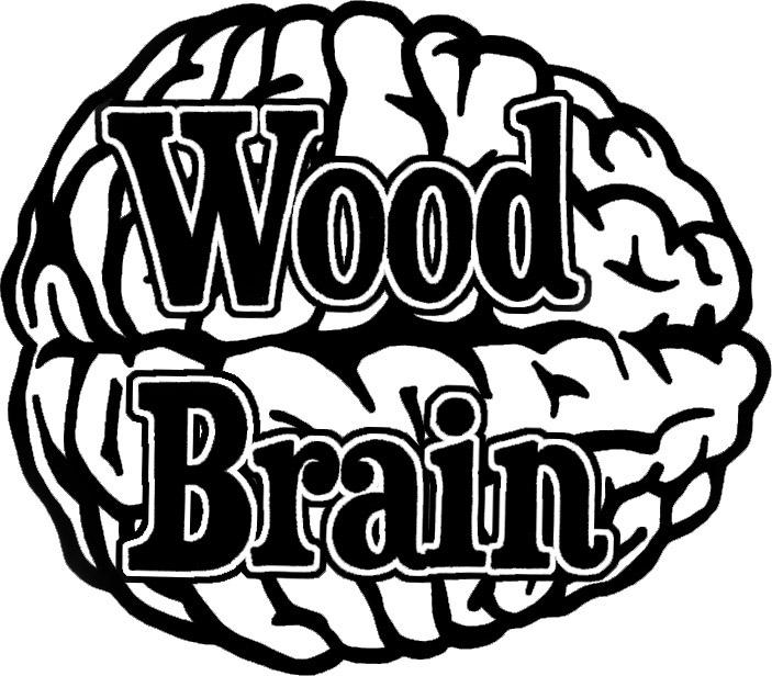 Wood Brain by Lindsay Zuelich