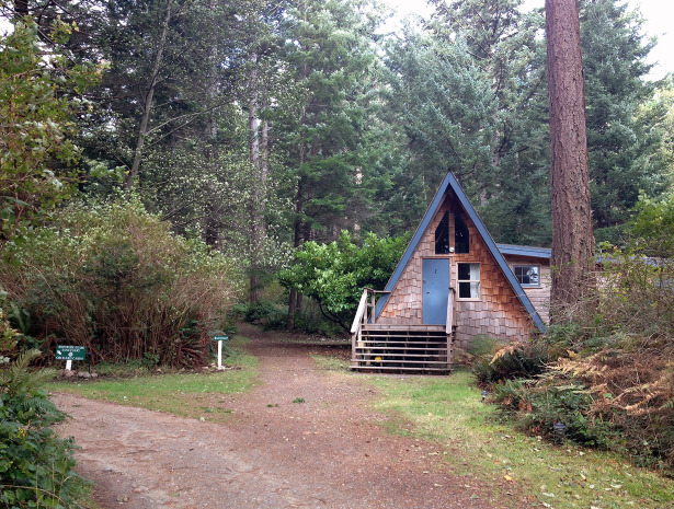 Our sweet little cabin in the woods