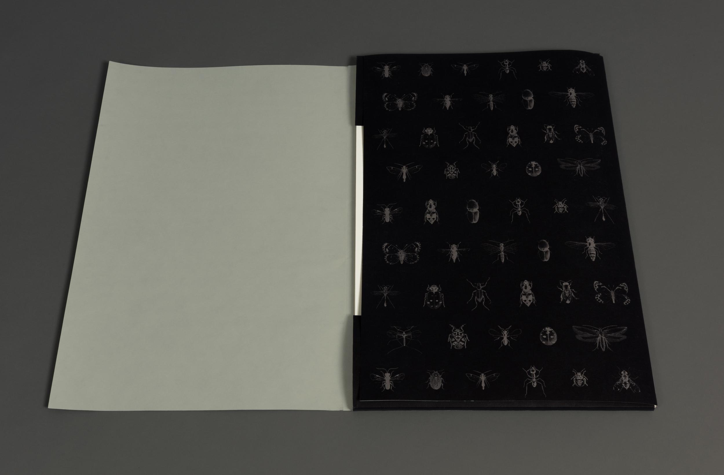 Wrapper-1.jpg