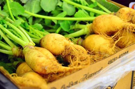 veg-small.jpg