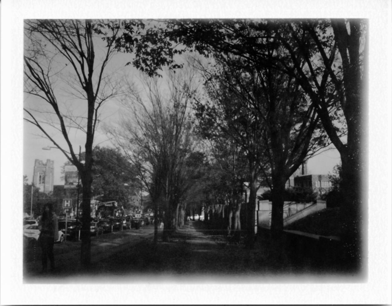 Polaroid102_web.jpg