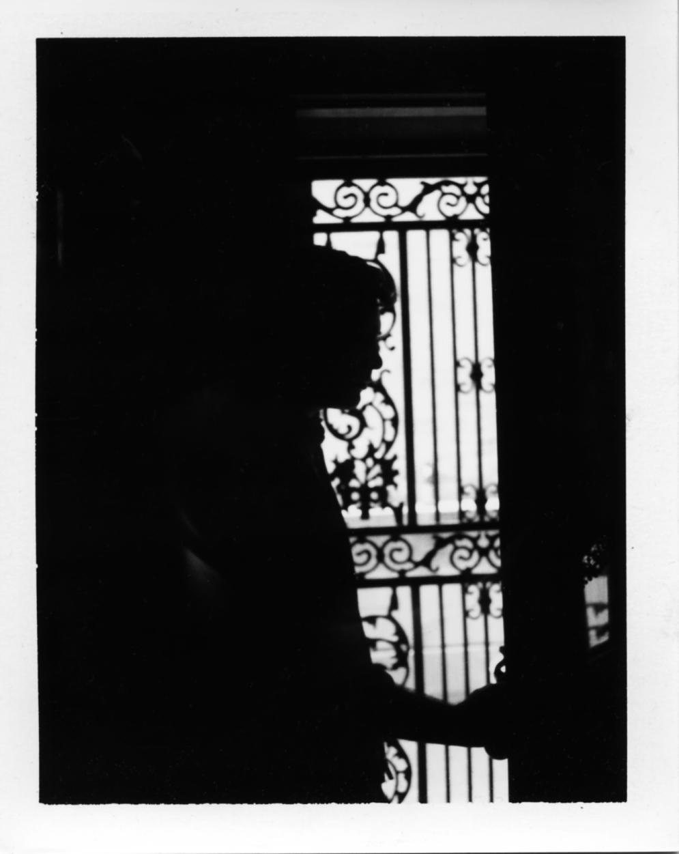 Polaroid244_flat.jpg