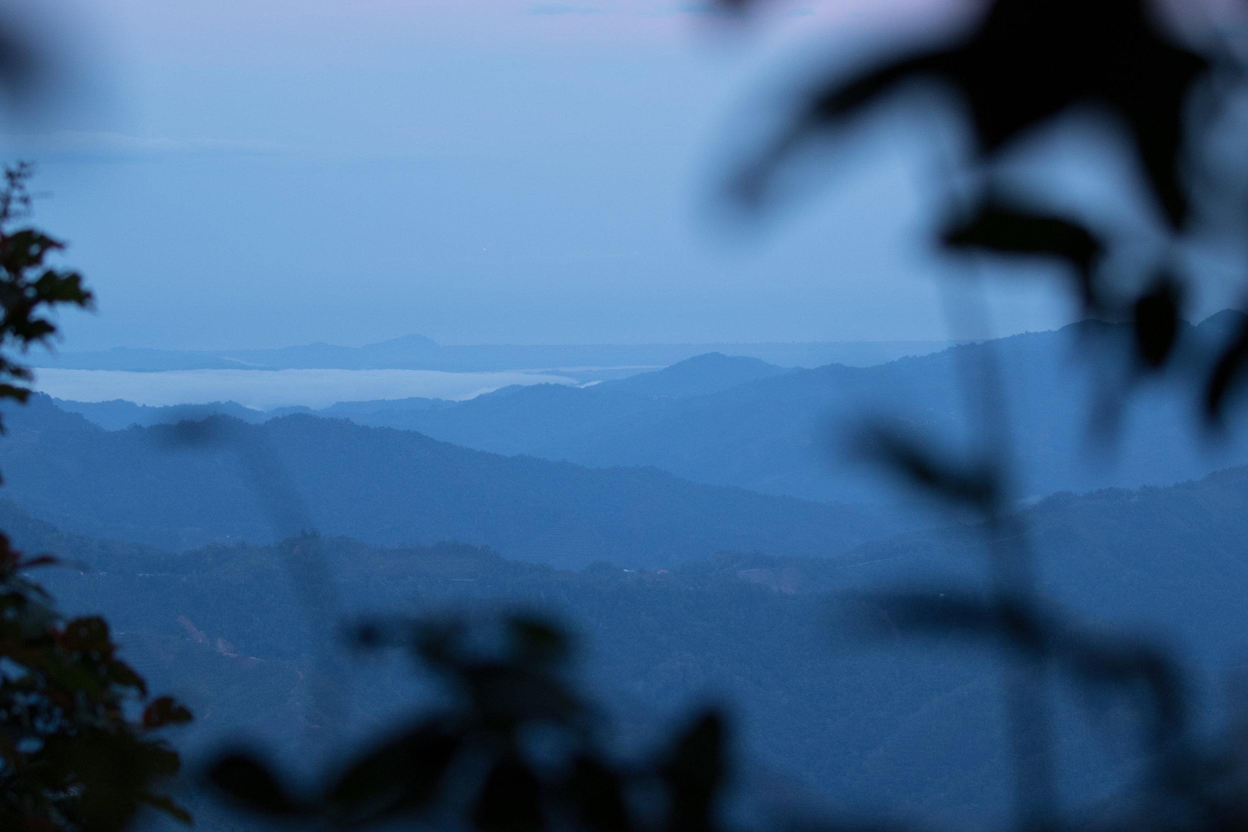 Good morning, Borneo