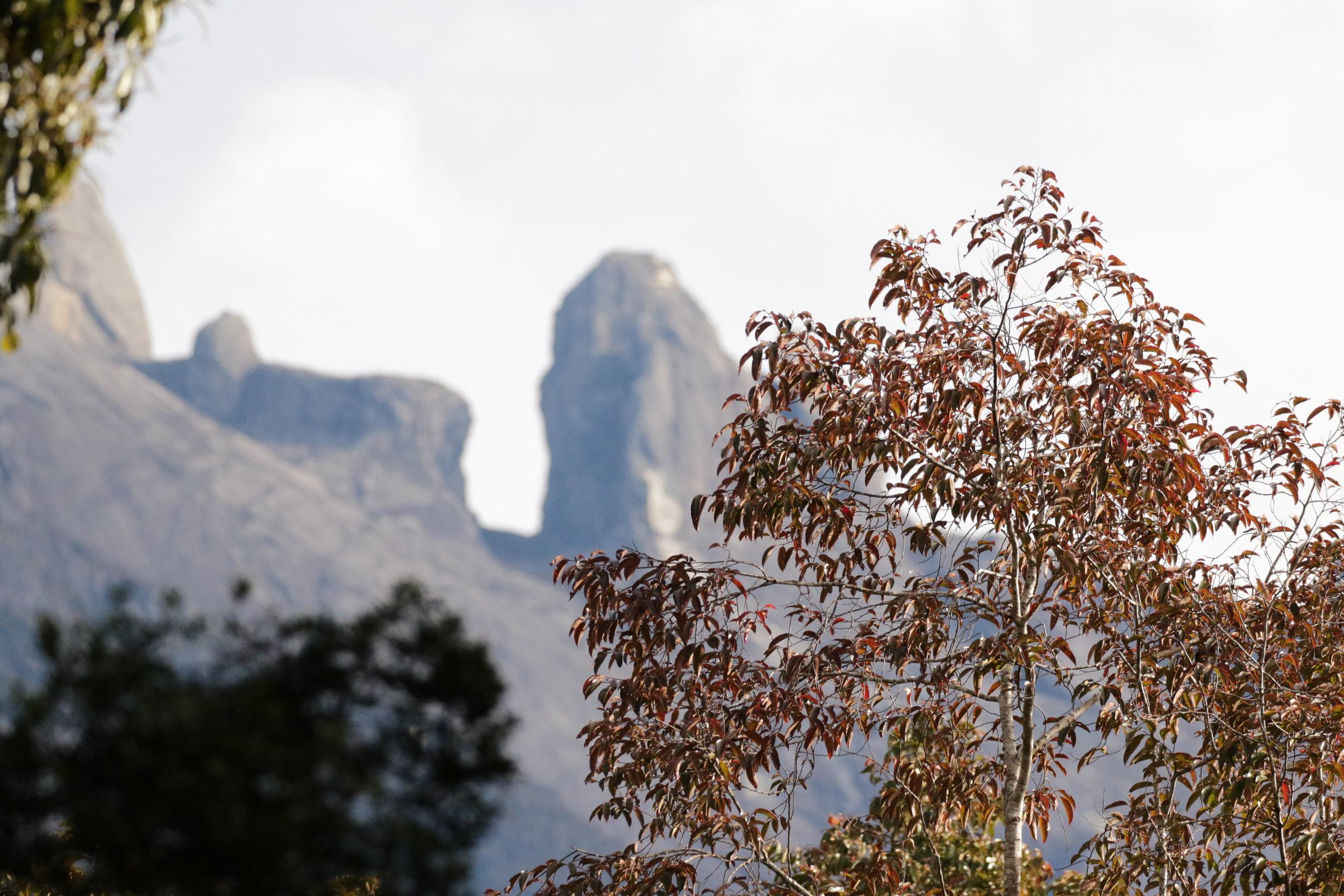 The peaks of Mount Kinabalu