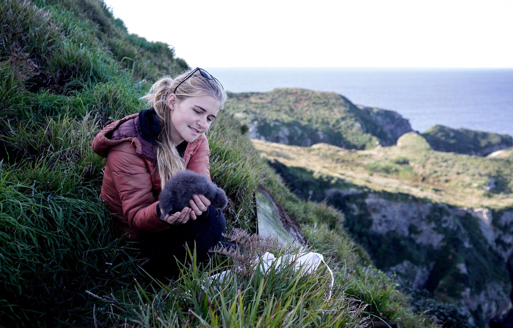 Abby And a Grey-Faced Petrel chick on the Mokohinau Islands, New Zealand (Photo by Edin Whitehead)