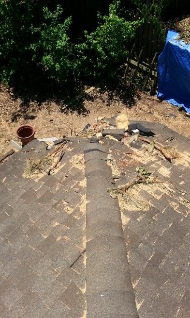 Tree damaged hip roof