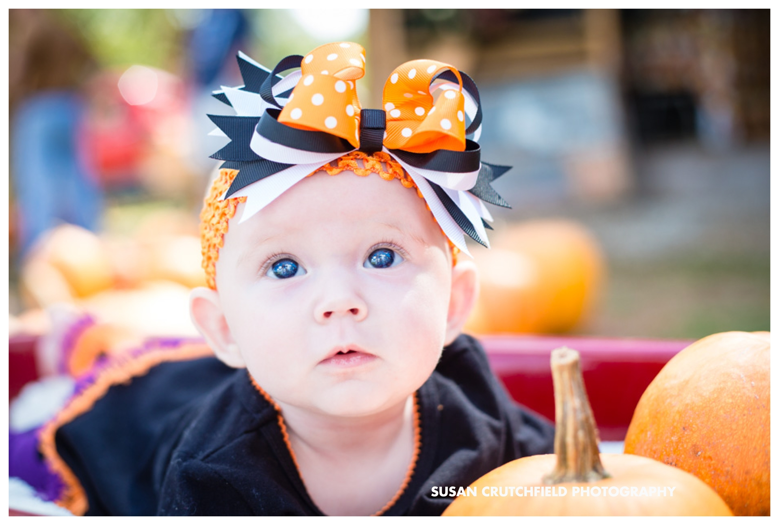 Newnan Baby Photographer