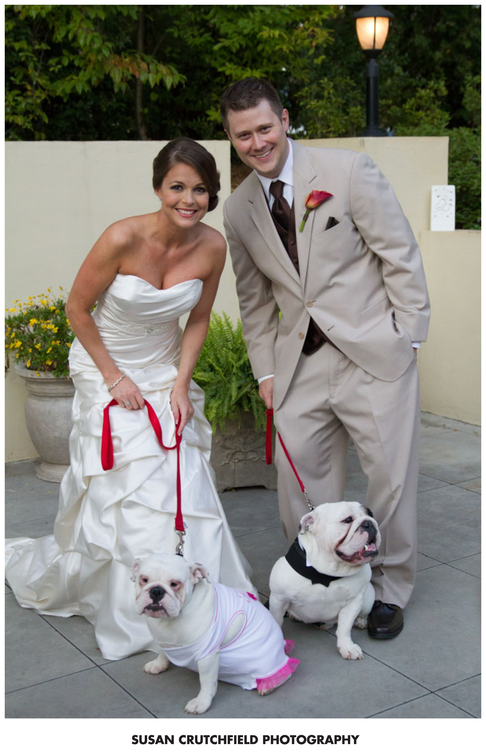 bulldog weddings