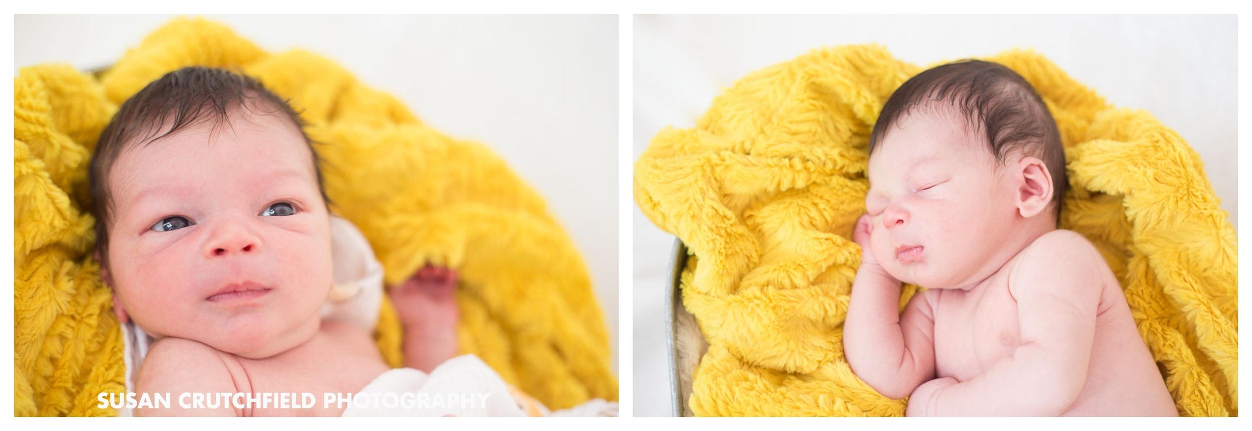 Brookhaven Newborn Photographer