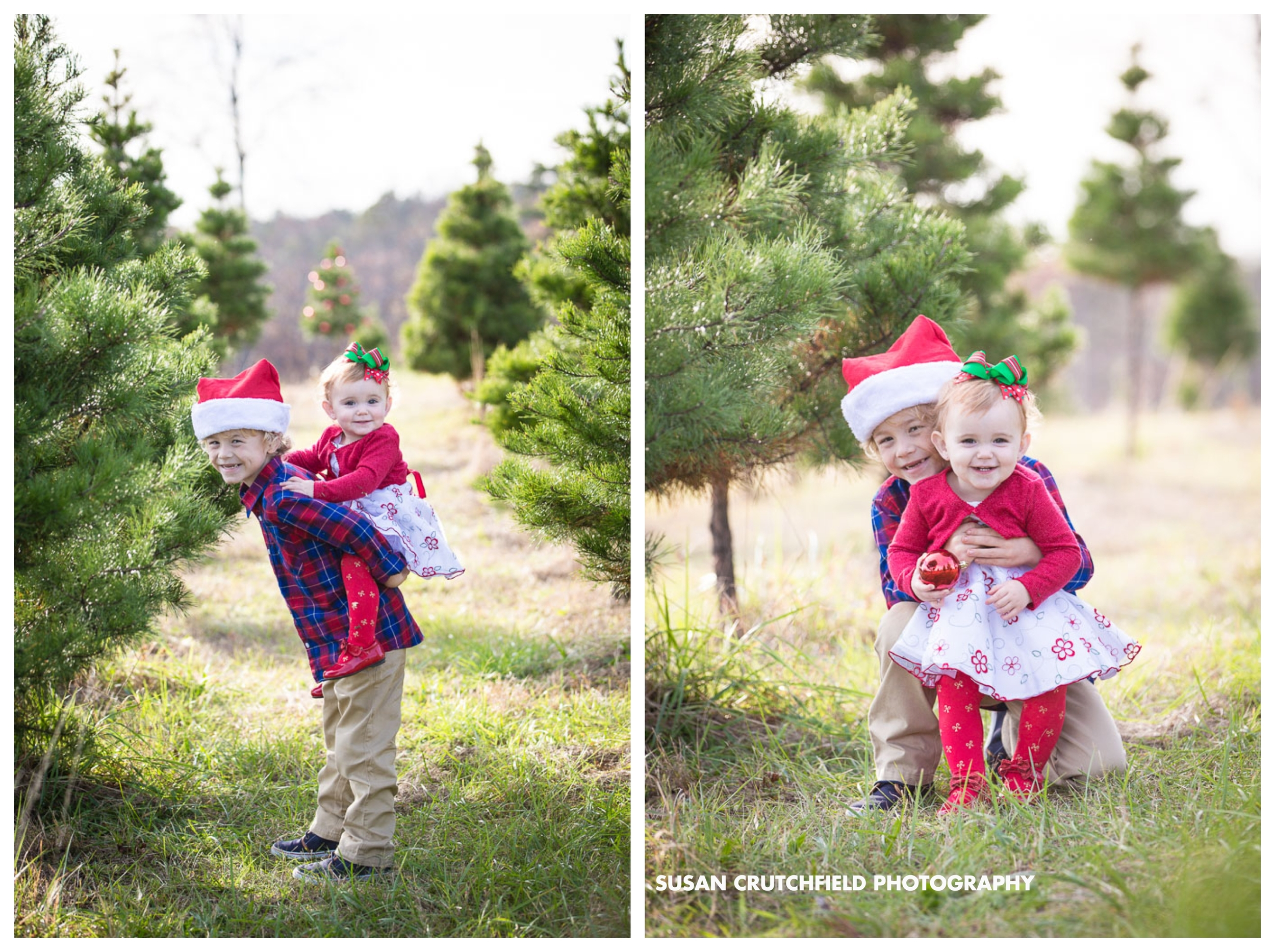 Pine Mountain Children's Photographer