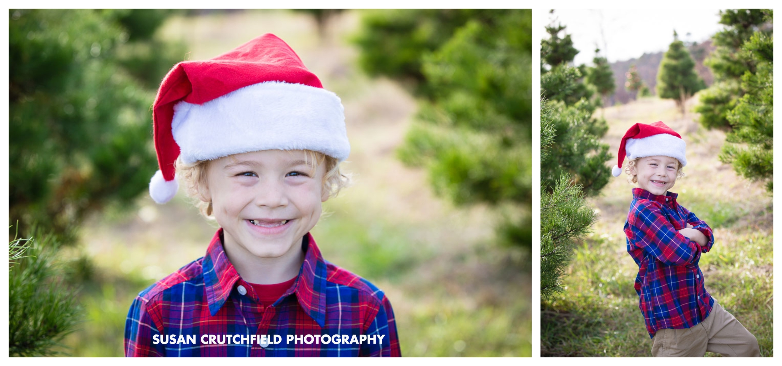 Pine Mountain Family Photography