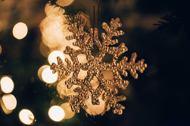 A-Commons-Christmas---Cameron-May-Photography-7.jpg