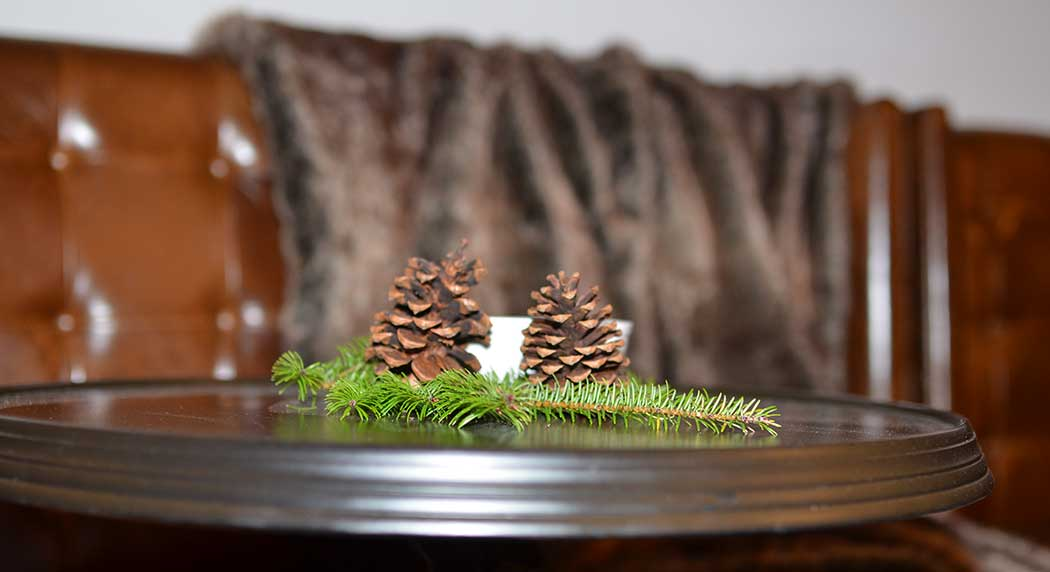 evergreen-detail.jpg