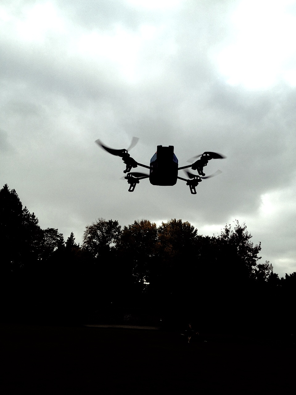 We have been drone testing and experimenting as well. Here's the drone looking at us....