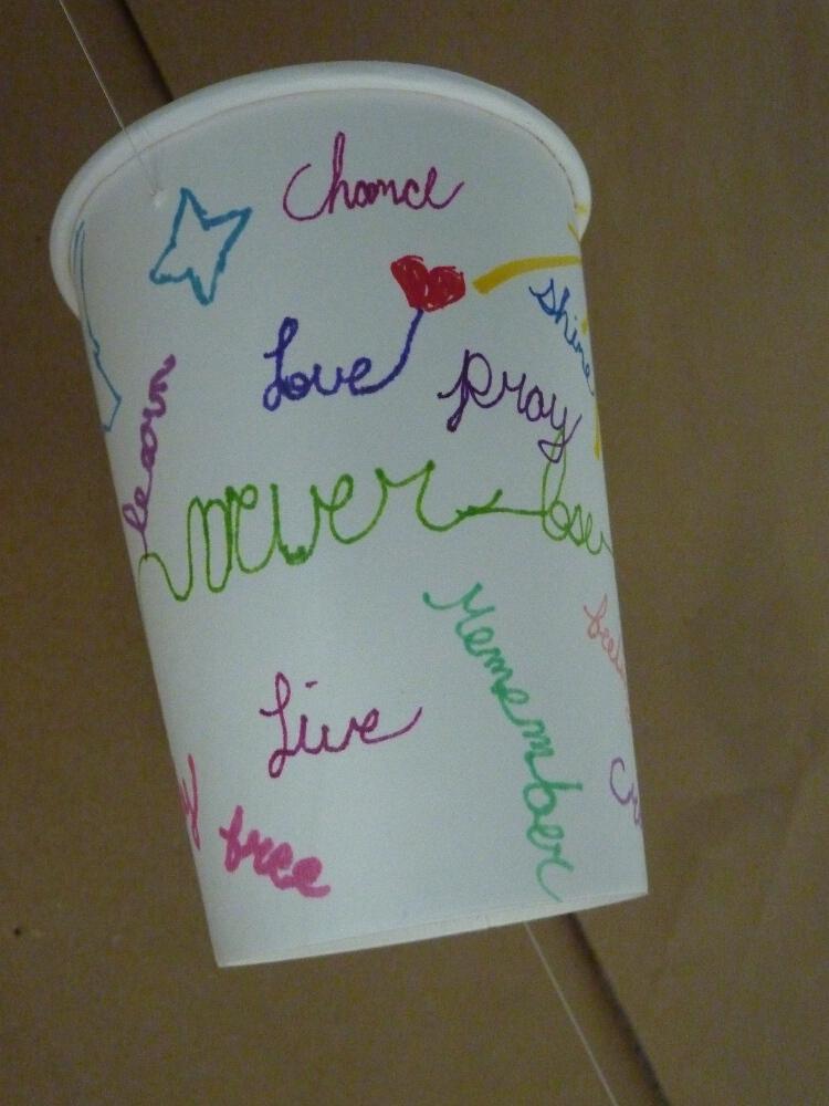 cups_P1030842.jpg