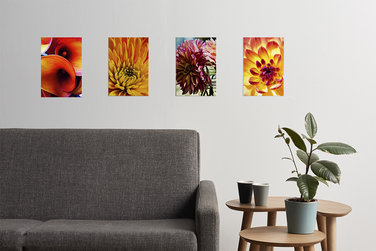 Click on the picture to see the endless possibilities of art to personalize your space.