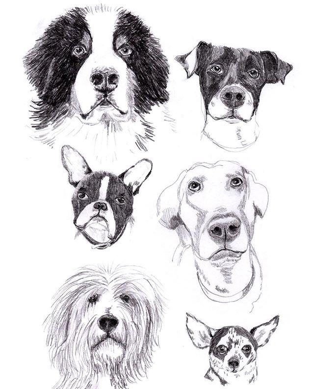 Happy National Dog Day!  #NationalDogDay #nationaldogday #dog #cutedogs #dogs #dogsofinstagram #everybodysbestfriend #illustration #drawing #dogart