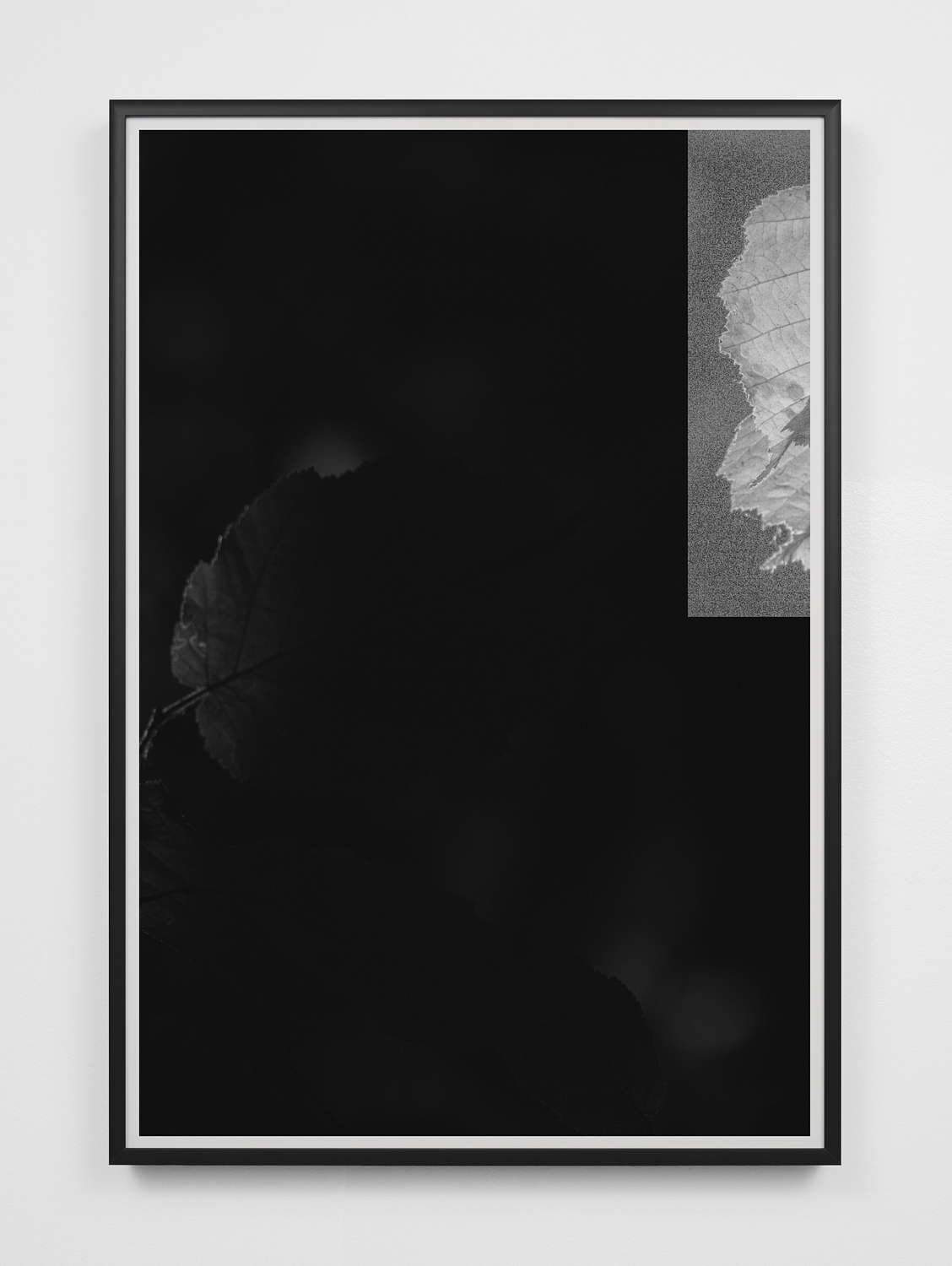 096:B-02/P-03 , 2018  Archival pigment print on fiber paper 19 x 13 inches (Image: 18 x 12 inches) Black aluminum frame, anti-reflective museum glass