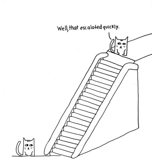 EscalatorCats.png