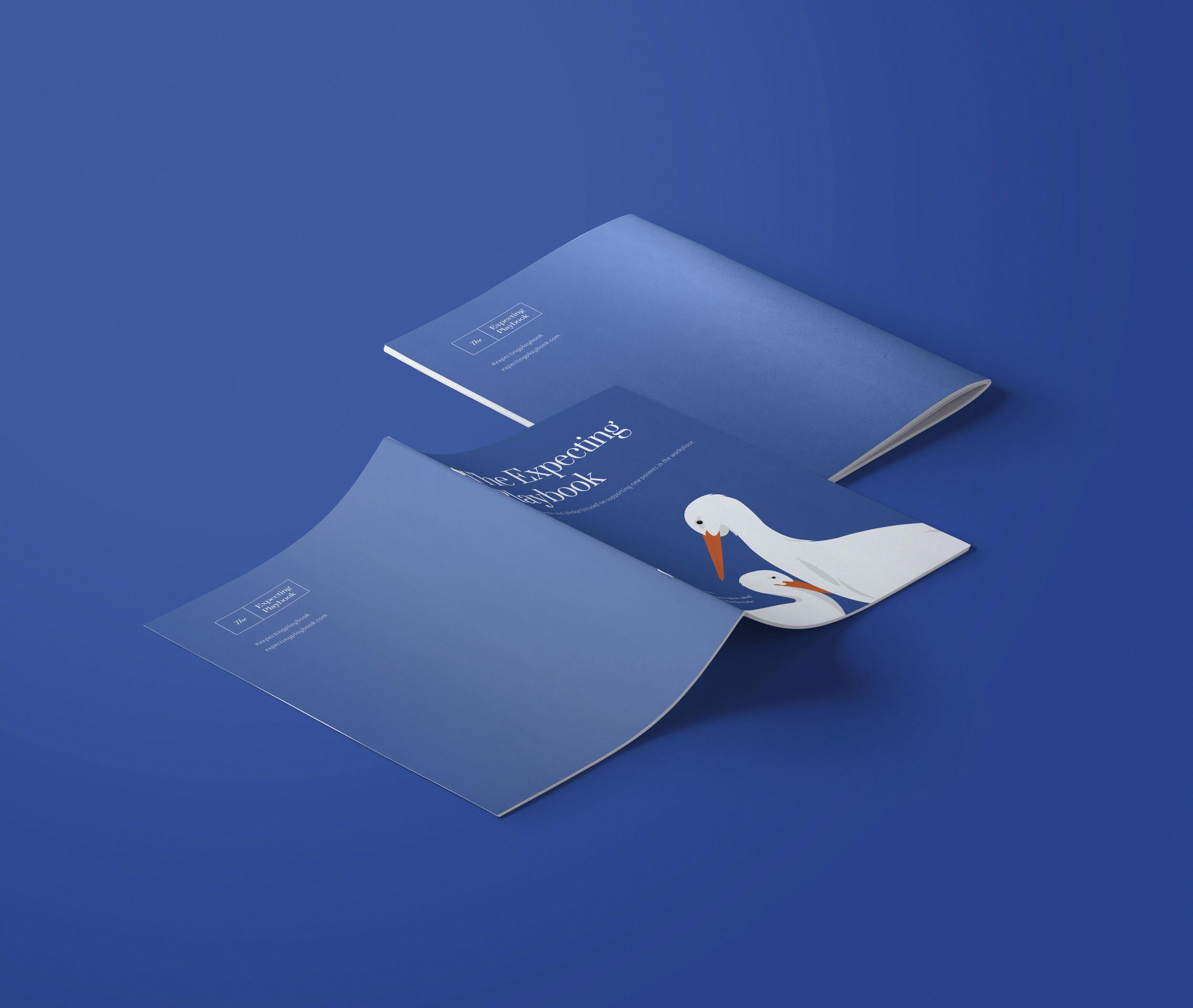 expecting-playbook-brochure.jpg