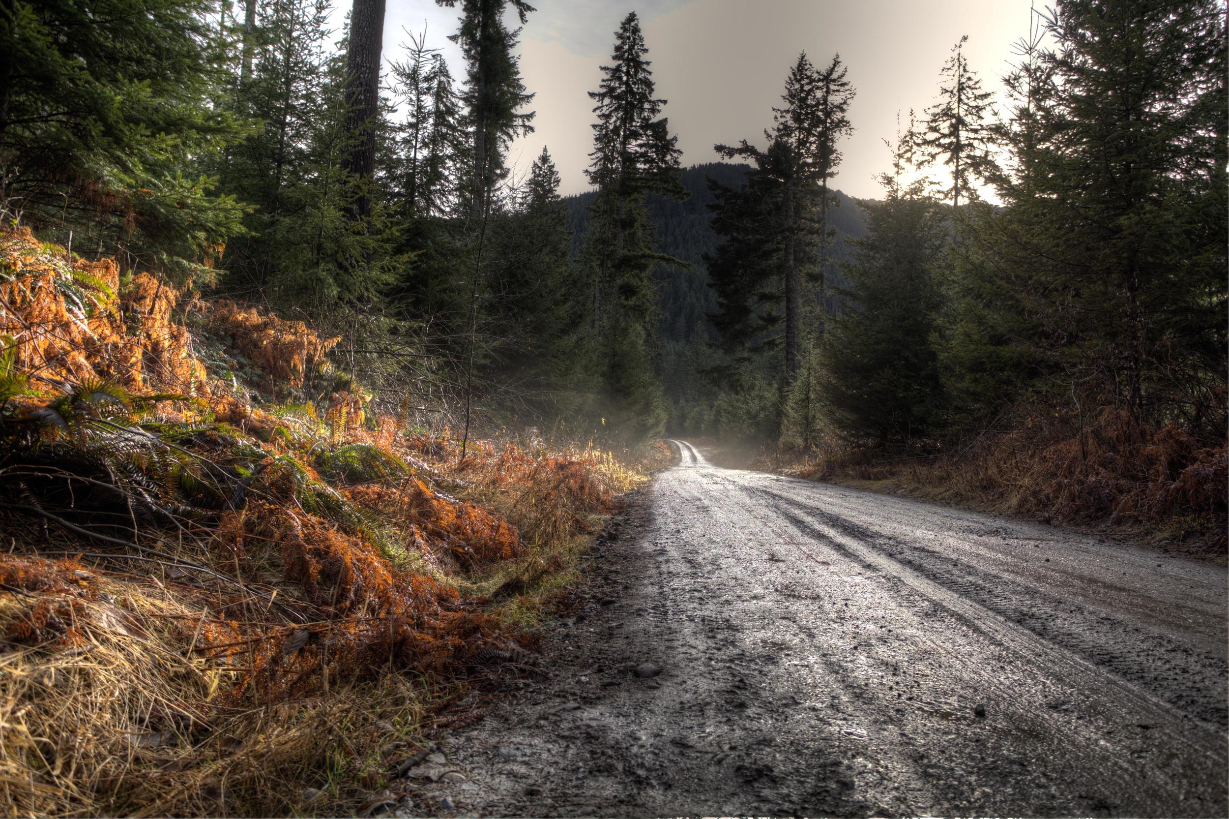 Warm winter roads