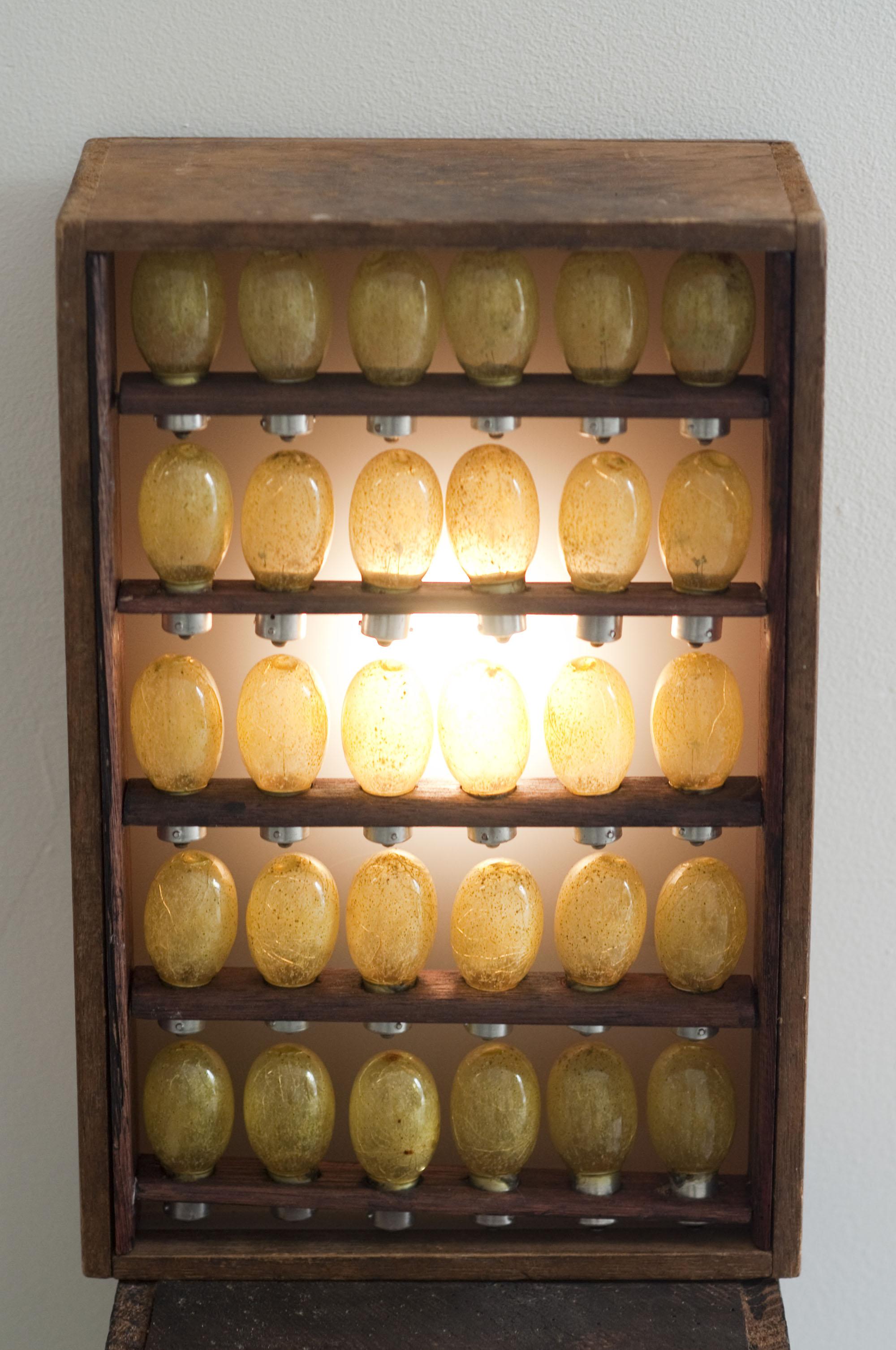 The Living Room, 2009. Ghostpatrol.