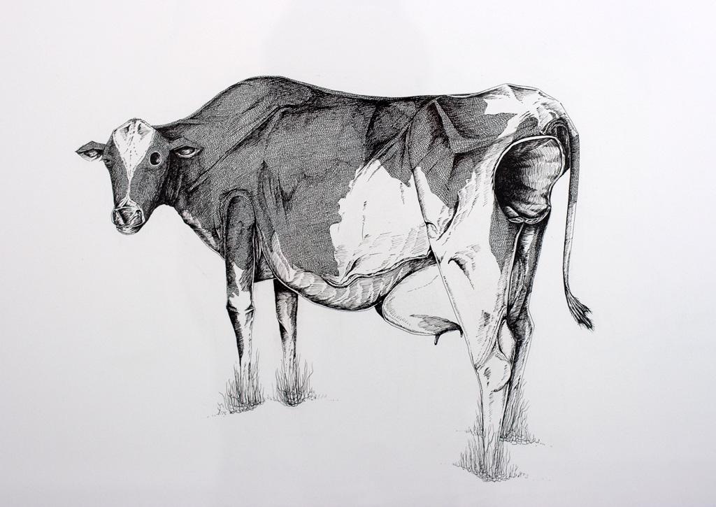 """""""A Strange Harvest I""""  Ink on paper  2011"""
