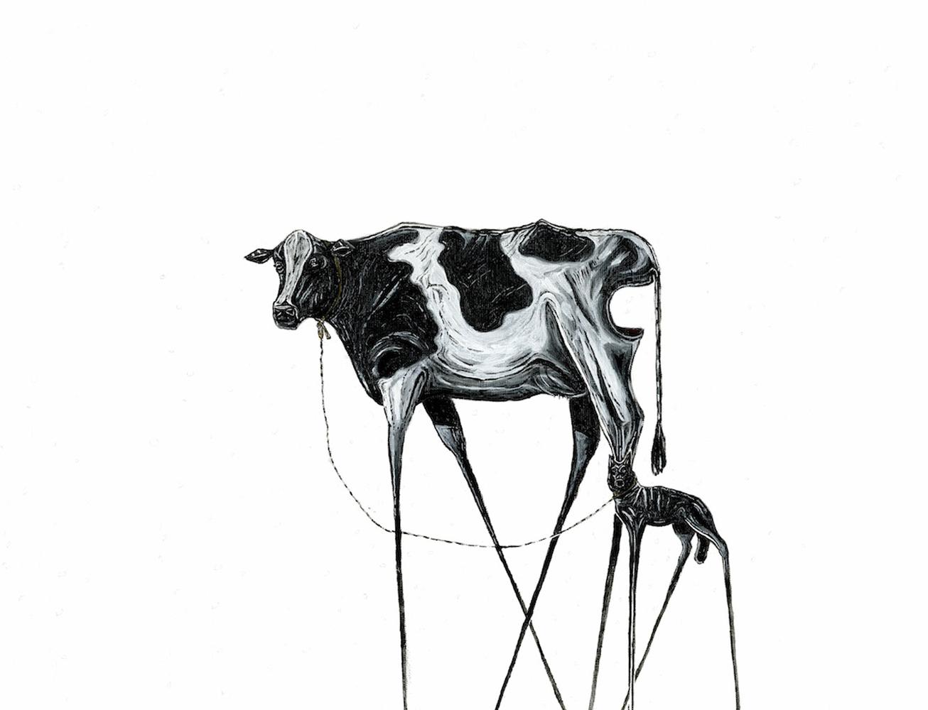 dazed cow tied to black dog.jpg